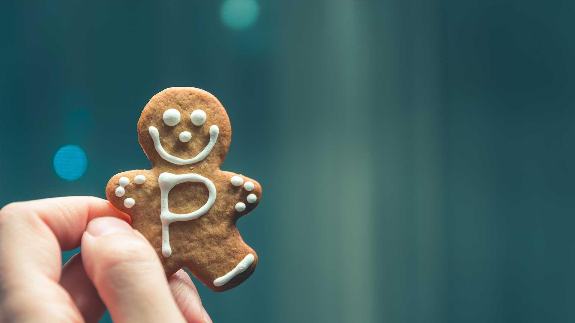 Mr. Sigsegv - Política de cookies